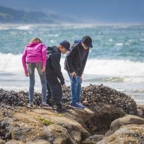 Family looking at tidal pools.