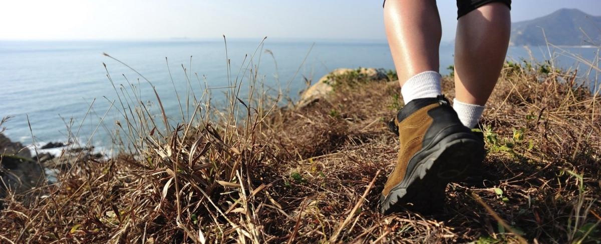 Hiker overlooking the coast.
