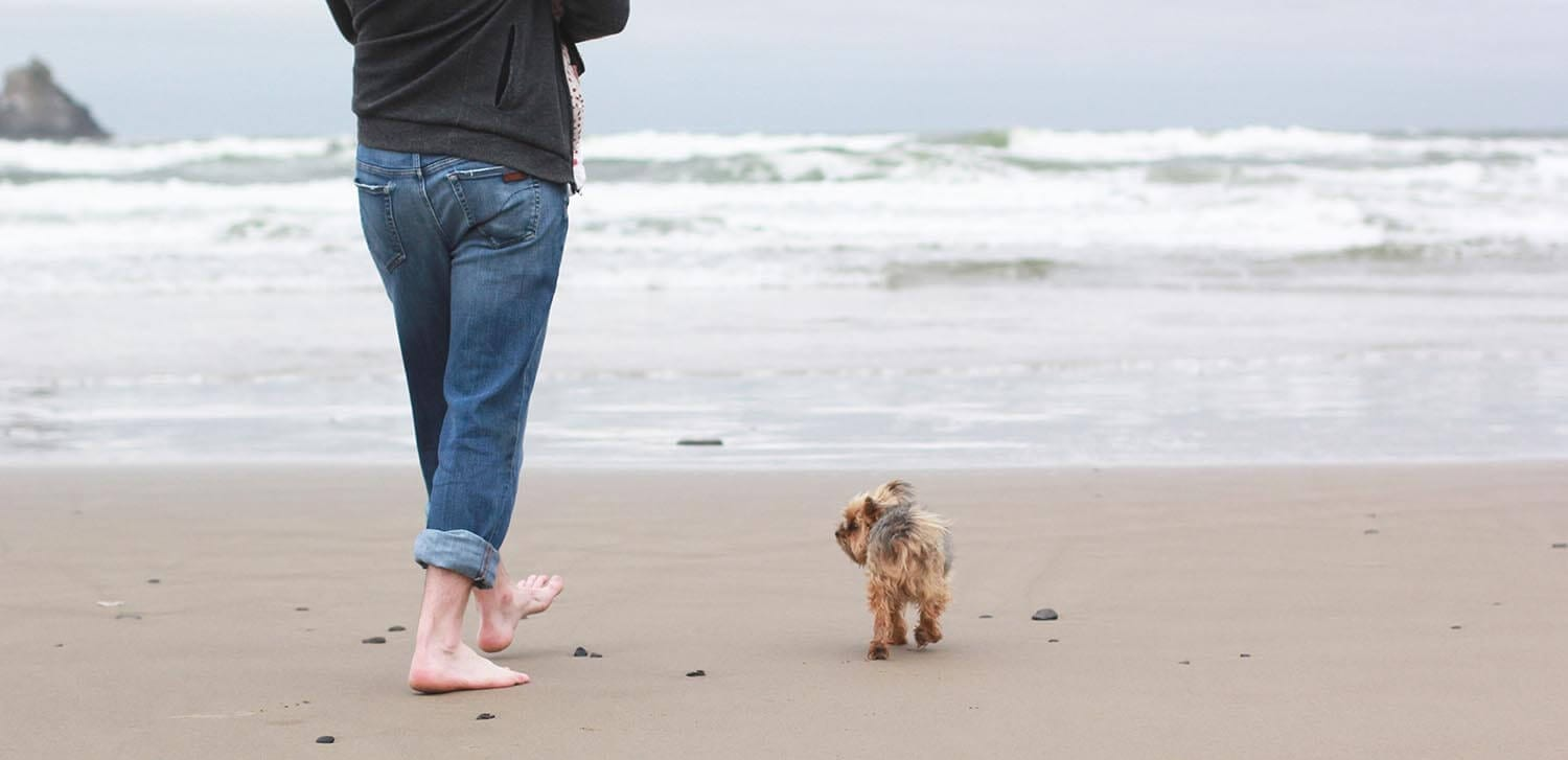 Little dog and woman on a beach.