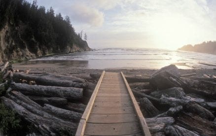 Wooden path to beach.
