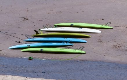 Surfboards on the shore.