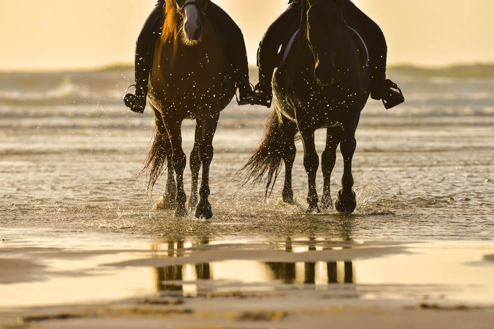 Photo of a Couple Beach Horseback Riding on the Oregon Coast.