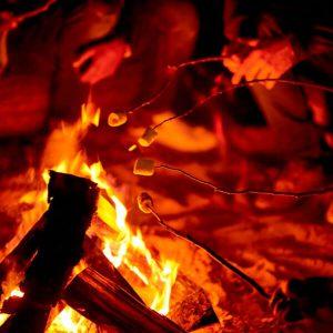 Bonfire roasting marshmallows.